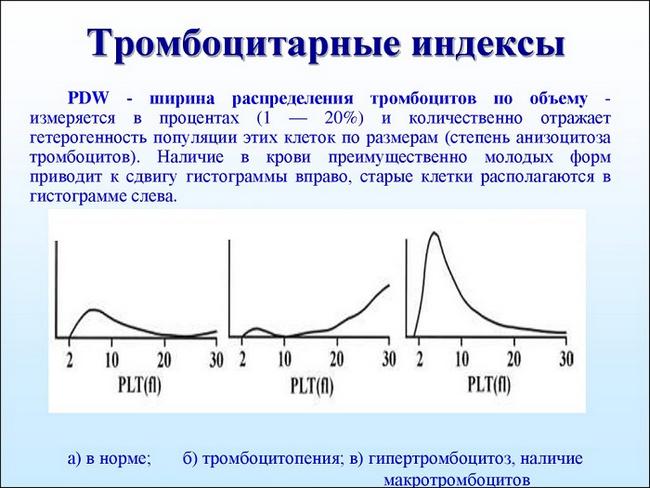 Индекс распределения тромбоцитов