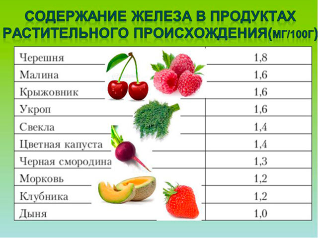 Содержание железа в продуктах растительного происхождения