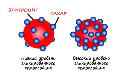 Уровни гликированного гемоглобина