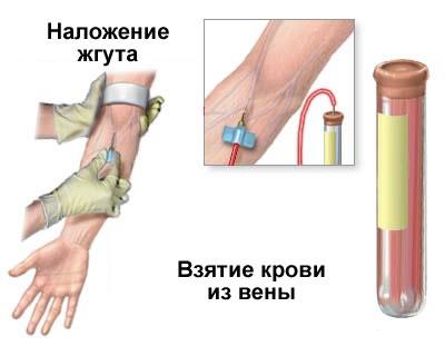 Забор крови для БАК